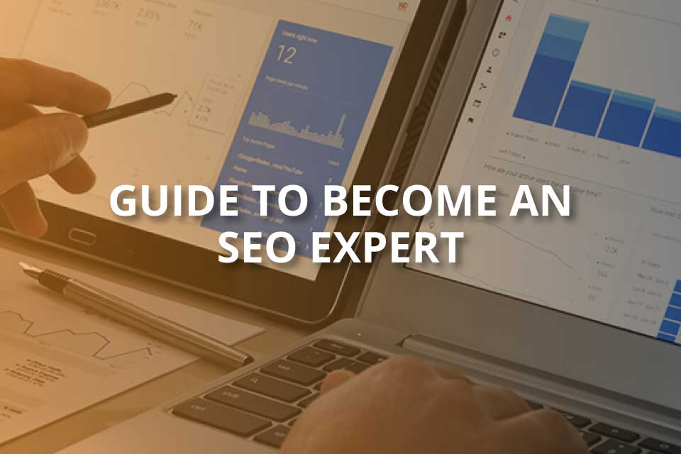 guite to become an seo expert